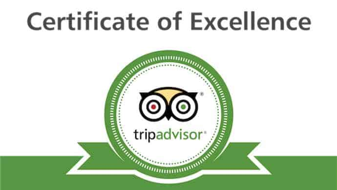Tripadvisor best vegan restaurant in the south west